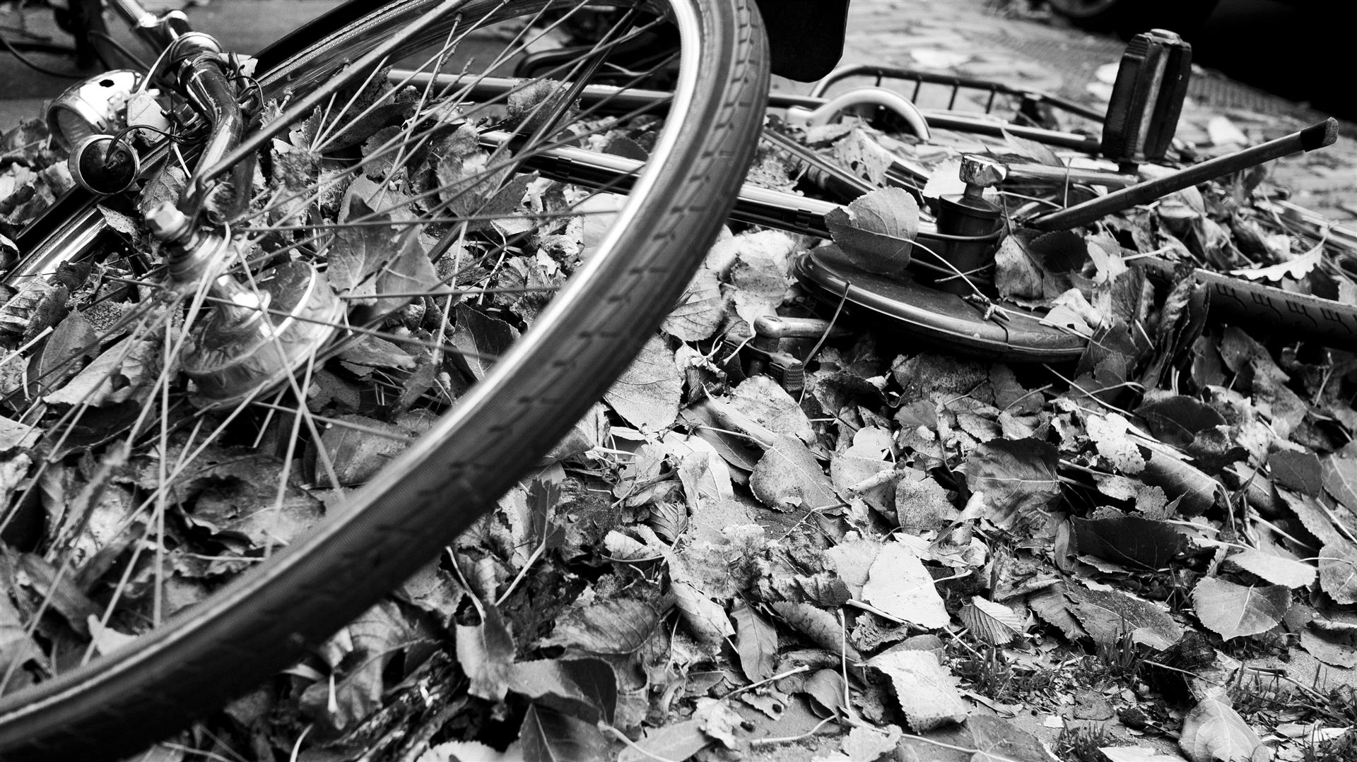 leaves piling up underneath fallen bicicle